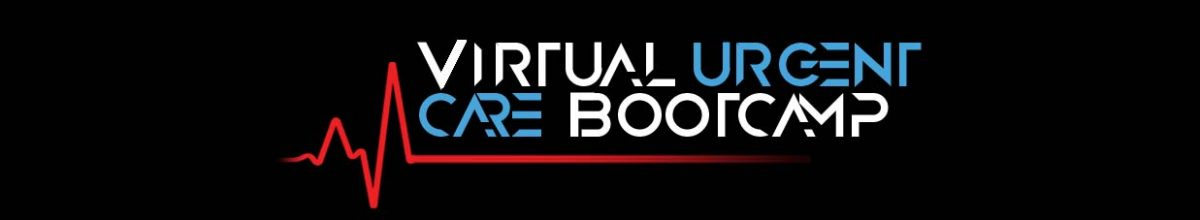 Virtual Boot camp 2020 logo - PSD format final without date (002)
